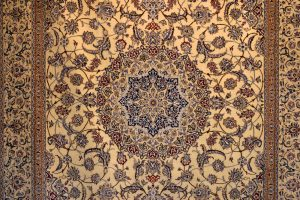 Todays Carpet Trends Carpet cleaning Bloomington IL